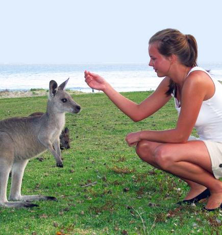 Australien copy