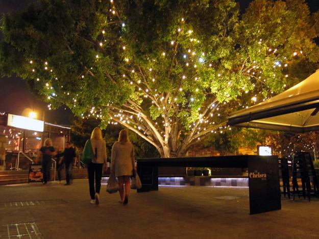 Veronica och Jenny under det vackra trädet i centrum nära vårt hostel :)