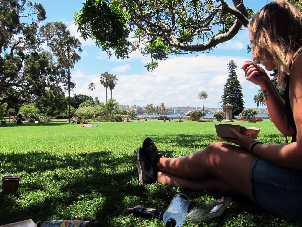 Blogg Sydney 1